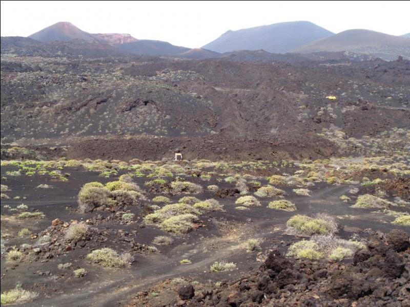"""Le sud de l'île est aujourd'hui la partie où le volcanisme est le plus actif. Quel nom, signifiant littéralement """"source chaude"""", la principale localité du sud de l'île porte-t-elle ?"""