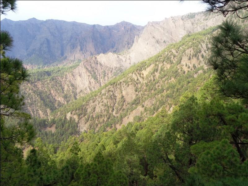 La Palma abrite un parc national que voici en photo, la Caldeira (ou Caldera en espagnol) de Taburiente. Qu'est-ce qu'une caldeira ?