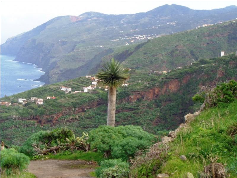 Ses paysages sauvages et verdoyants et sa qualité de vie ont valu deux surnoms à La Palma. Cochez la proposition qui n'en est pas un.