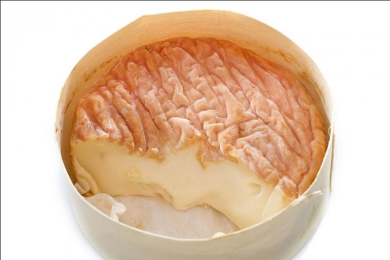 Voilà le fromage !