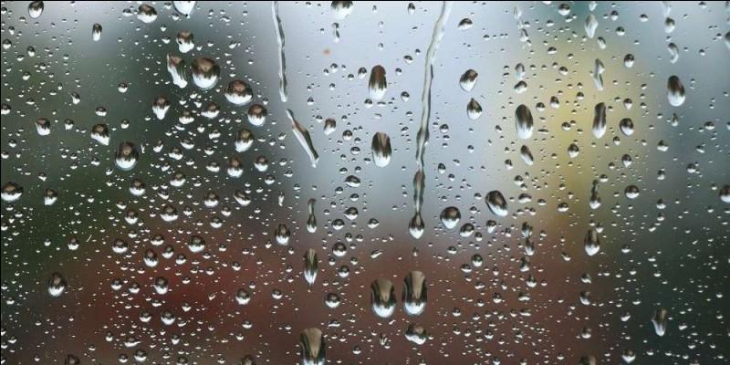 Pendant un après-midi pluvieux, tu invites ton amie. Que fait-elle ?