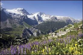 Dans quelle chaîne de montagnes se trouve le parc national des Écrins ?