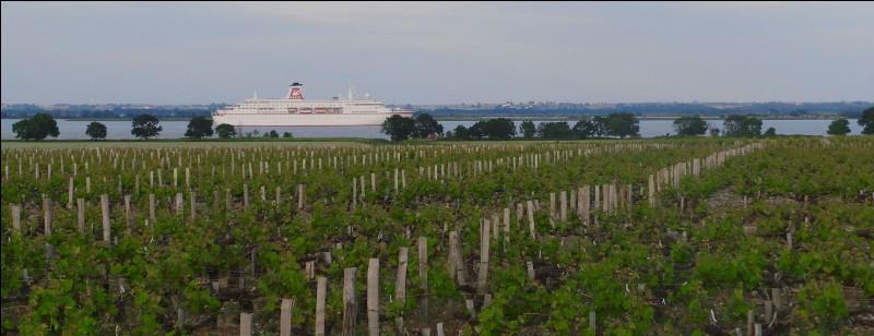 Quelle région viticole est située non loin de Bordeaux ?