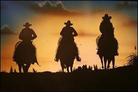 Le premier cascadeur de cinéma fut engagé en 1903, pour un western, car il était capable de tomber de cheval sans se blesser.