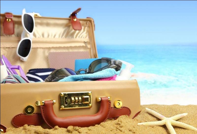 Enfin arrivent les vacances, que comptes-tu faire en ces beaux mois d'été ?