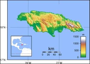 De quelle île le reggae est-il originaire ?