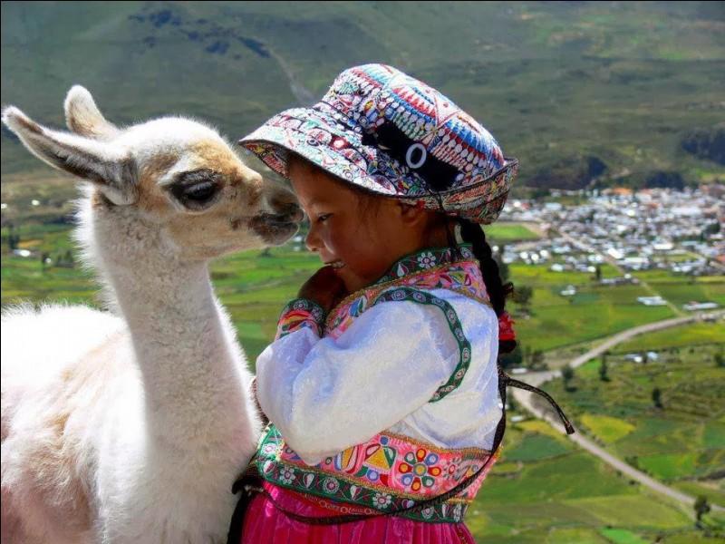 La photo d'Allin Sunqu, est intitulée ''Animal de compagnie'' : j'ai adoré la complicité qui lie ces 2 jeunes. C'est un pays mythique, évocateur, tout le monde a une image, du Machu Picchu au lac Titicaca, en passant par les lamas ou bien les alpagas (comme celui-ci) dont c'est, le plus gros producteur mondial et puis, du ''Temple du Soleil'' avec notre ami Tintin. D'où viennent donc nos 2 amis ?