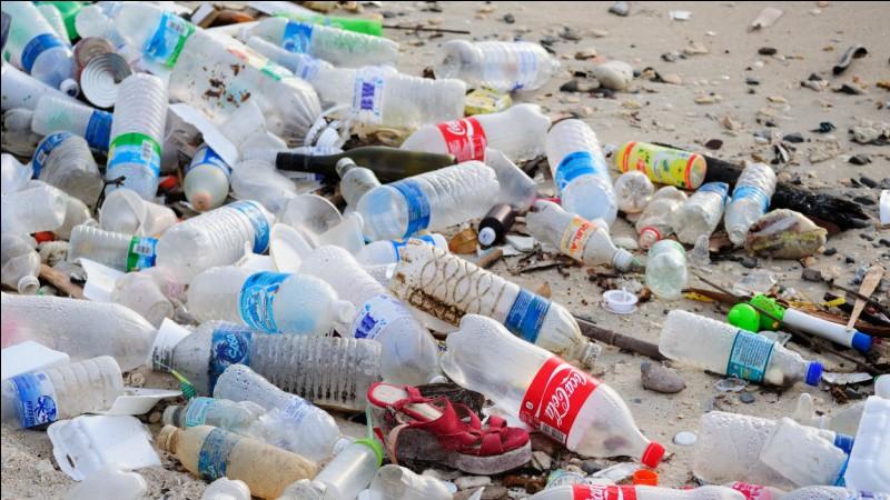 Quand on a jeté nos bouteilles à la poubelle, où vont-elles ?