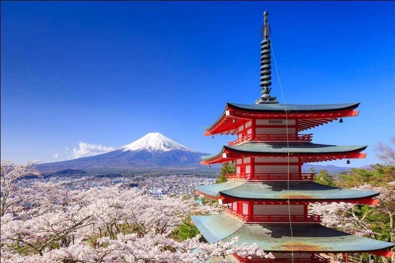 Pour aller de Paris à Tokyo il a 5 heures décalage horaire.