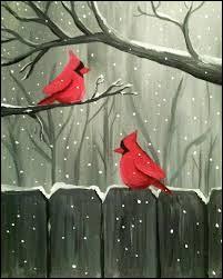 """Où pourrez-vous rencontrer ce magnifique oiseau appelé """"Cardinal rouge"""" ?"""