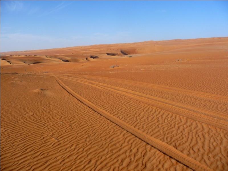 Avec quelle voiture française culte est-il possible d'effectuer un périple, organisé tous les ans dans le désert, à but associatif ?