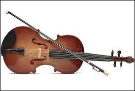 """C'est une chanteuse et violoniste connue pour de nombreuses chansons dont """"Nuit magique"""", il s'agit de..."""