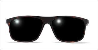 Il est critique musical et porte toujours des lunettes de soleil, il s'agit de...
