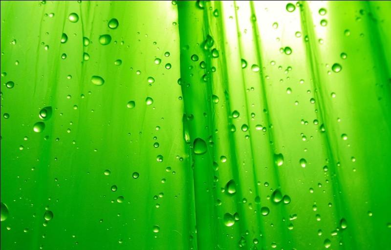 Sans transition, passons maintenant aux couleurs.La couleur principale de l'Irlande est le vert ! Comment dit-on vert en irlandais ?