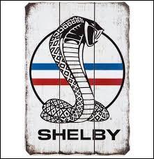 Quel est le prénom du créateur de Shelby ?