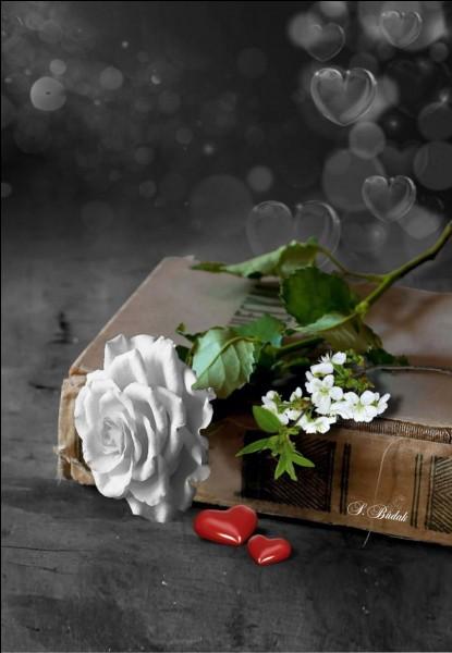 """Qui est l'auteur du livre """"Les Crimes de l'amour"""", relatant une passion incestueuse ?"""
