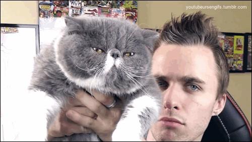Comment s'appellent ses deux chats ?