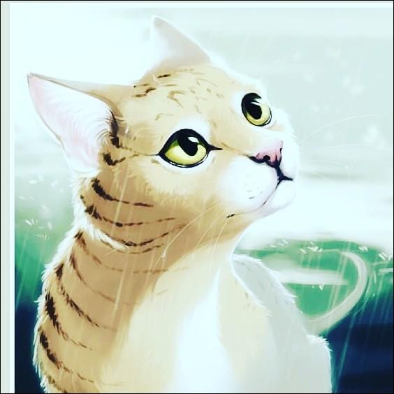 Quelle est la chatte sur cette image ?