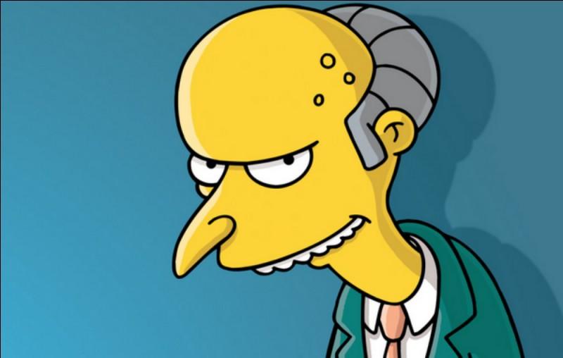 Pour quelle raison Mr Burns n'est-il pas aimé par les habitants ?