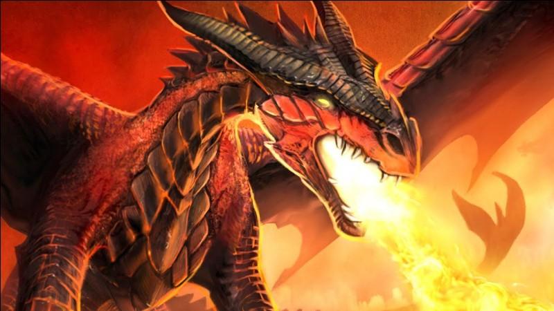 Passons aux questions du 1er tome : qui sont les gardiens des dragonnets du destin ?