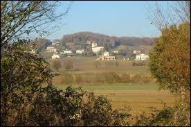 Commune du Quercy blanc, en Occitanie, Saint-Cyprien se situe dans le département ...