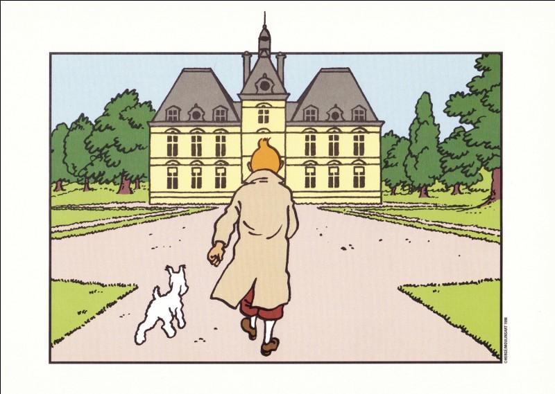 Quelle aventure de Tintin se déroule intégralement à Moulinsart ?