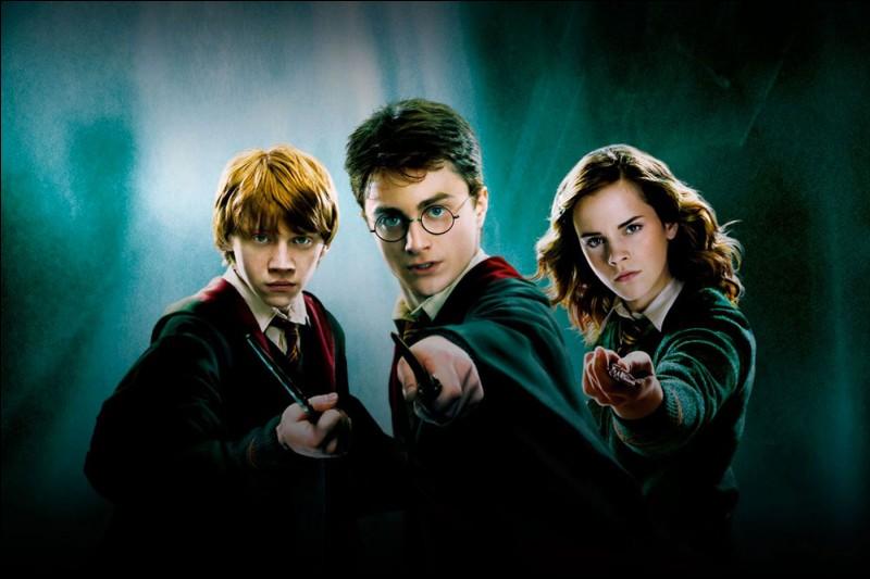 Comment s'appellent les compagnons de Harry Potter ?