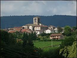 Saint-Amant-Roche-Savine est un village Puydômois situé en région ...