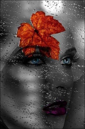 """Retrouvez le titre de la chanson d'Anne Vanderlove dans laquelle elle chante """"Il pleut sur le jardin sur le rivage, et si j'ai de l'eau dans les yeux c'est qu'il me pleut sur le visage..."""""""