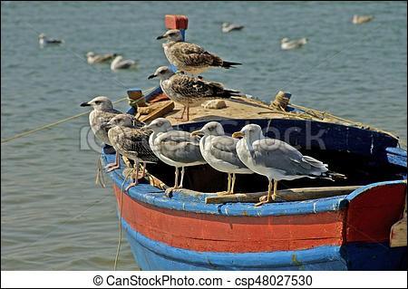 Je te donnerai, tous les bateaux, tous les oiseaux !