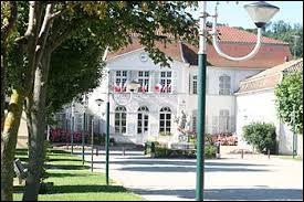 Ville d'Auvergne-Rhône-Alpes, dans l'arrondissement de La Tour-du-Pin, Saint-Savin se situe dans le département ...