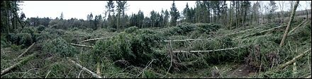 X,Y,Z : Zeus : la tempête a fait 2 morts dues à des chutes d'arbres, 600 000 foyers privés d'électricité. L'île d'Ouessant en Bretagne a enregistré...