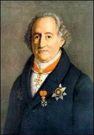 """Quelle langue évoque-t-on dans la phrase """"Parler dans la langue de Goethe"""" ?"""