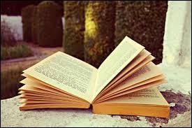 """Qui est l'auteur du roman """"Le Père Goriot"""" ?"""