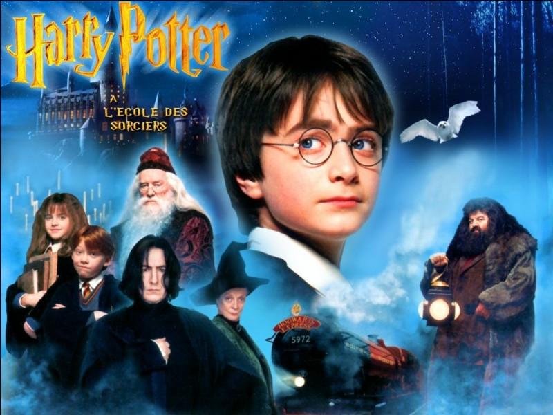 Comment s'appelle le sorcier qui ramène Harry Potter ?