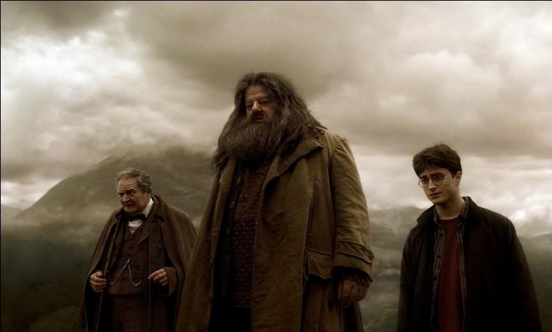 Qui met le feu à la maison d'Hagrid ?