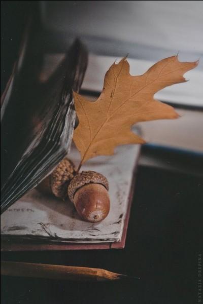 """Qui, dans son recueil """"Les feuilles d'automne"""", écrivait : """"Ce siècle avait deux ans, Rome remplaçait Sparte"""" ?"""