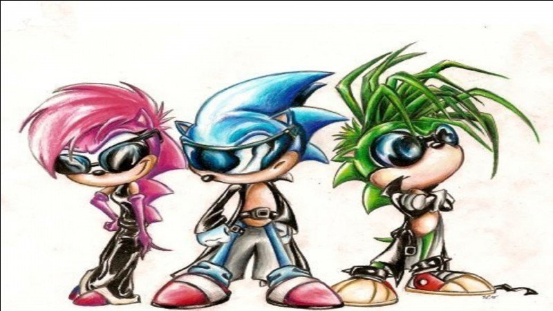 """De quel instrument Sonic joue-t-il dans """"Sonic le rebelle ?"""