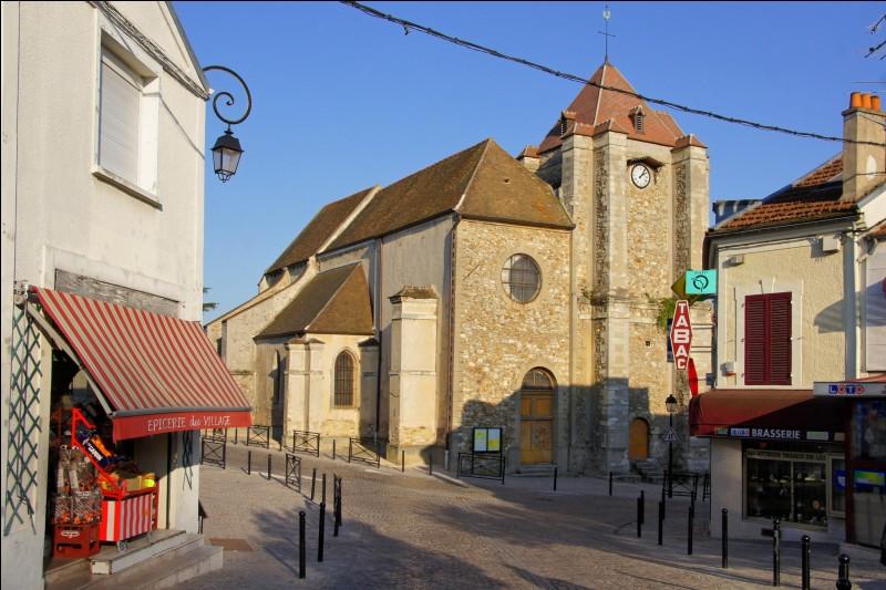 Comment se nomment les habitants de la Queue-en-Brie, dans le Val-de-Marne ?