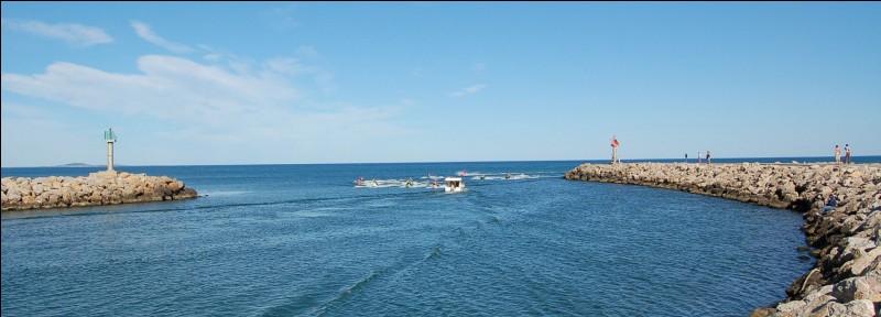 """Qui est l'auteur du vers : """"Homme libre, toujours tu chériras la mer"""" ?"""