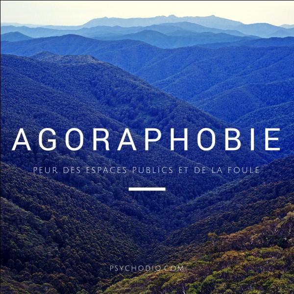 L'agoraphobie est la peur de quoi ?