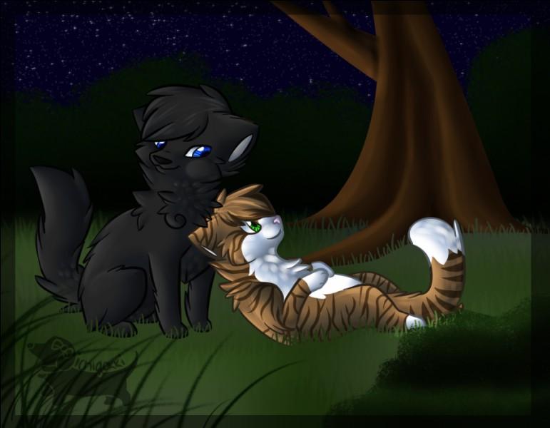 """Plume de Lune. Si Feuille de Lune fait partie des compagnes de Plume de Jais, ce chat de """"La Guerre des Clans"""" a aussi eu une relation avec Jolie Plume."""