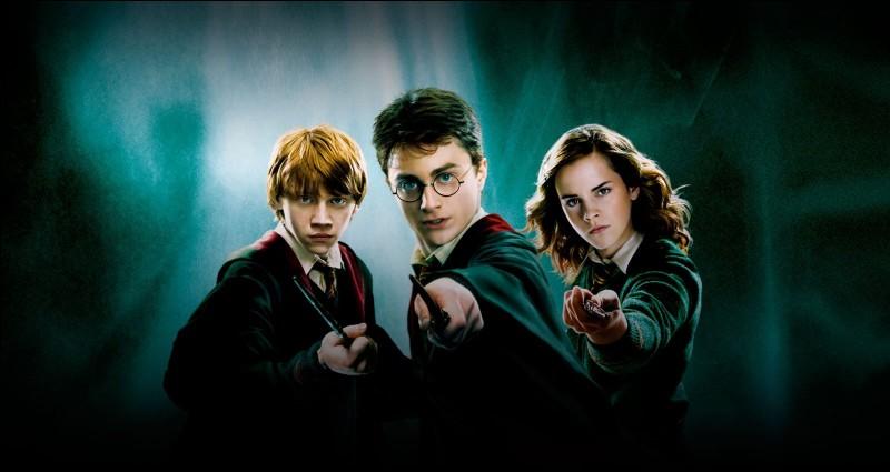 Dans ''Harry Potter'', tu préfères...