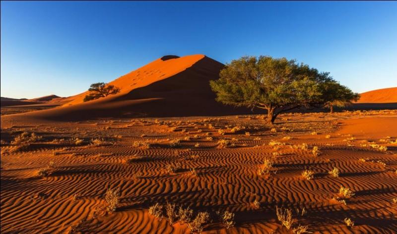 Dans quelle région du monde situez-vous le désert du Kalahari ?