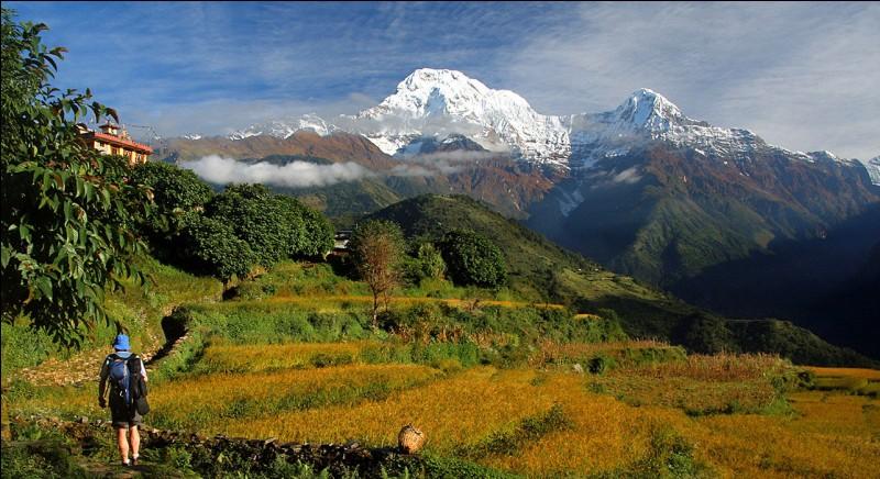 Parmi ces trois célèbres sommets, lequel se situe dans l'Himalaya ?