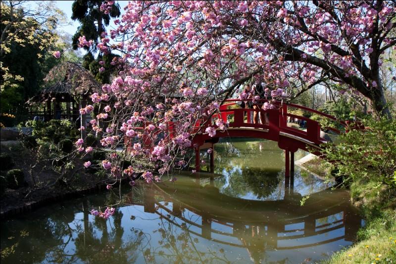 Créé en 1981 ce jardin japonais est labellisé ''Jardin remarquable''. Dans quel parc est-il situé ?