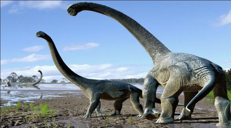 Lequel n'existait pas au temps des dinosaures ?