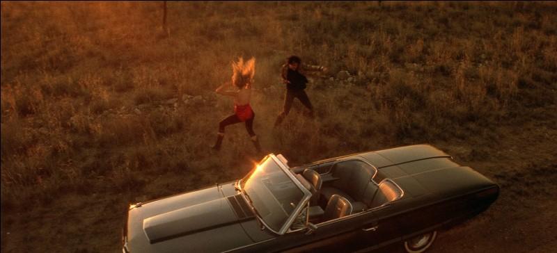 """""""Sailor et Lula"""" est un film interprété par Nicolas Cage."""
