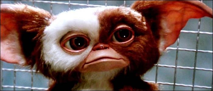 """Quel est le nom de ce mogwai dans le film """"Gremlins"""" ?"""