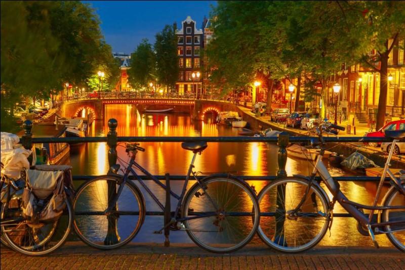 C'est une ville où je retourne et dans laquelle j'ai guidé des compatriotes en vélo. Mais la nuit, c'est autre chose : la vie nocturne y est l'une des plus intenses. C'est la destination préférée des jeunes, qui y viennent pour ses cafés, bars ou discothèques.Nommez cette ville où il est impossible de s'ennuyer, et où la lumière dans l'eau rend l'endroit tout simplement magique.